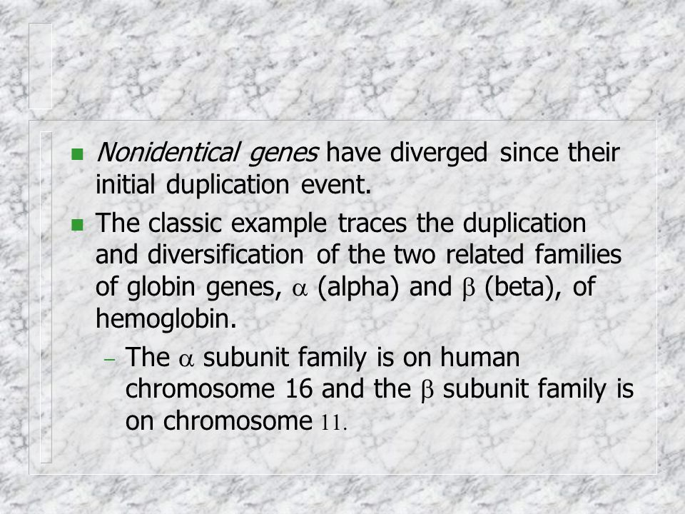 Nonidentical genes have diverged since their initial duplication event.