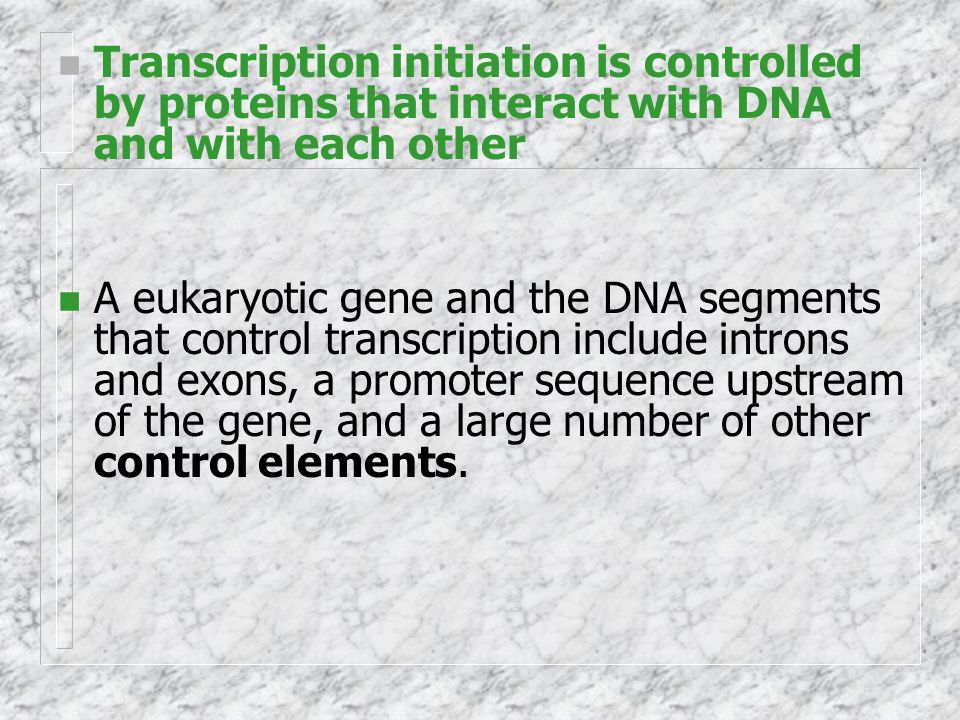 Transcription initiation is controlled by proteins that interact with DNA and with each other