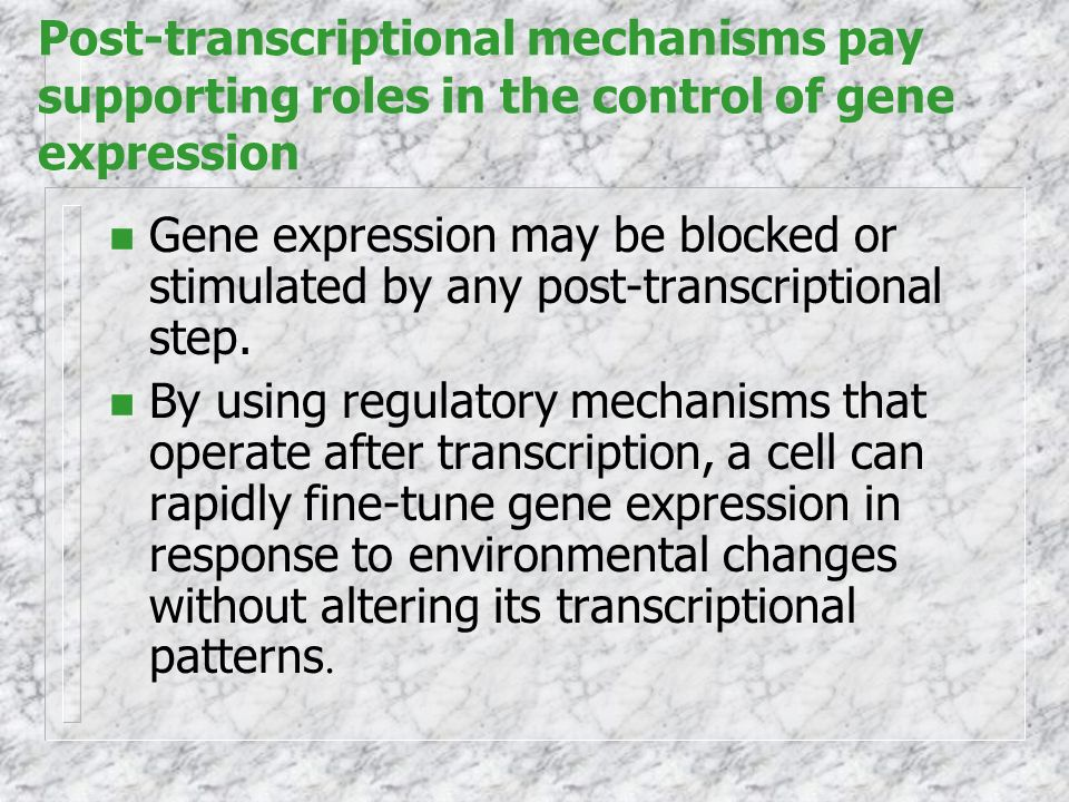 Post-transcriptional mechanisms pay supporting roles in the control of gene expression