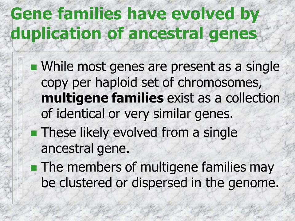 Gene families have evolved by duplication of ancestral genes