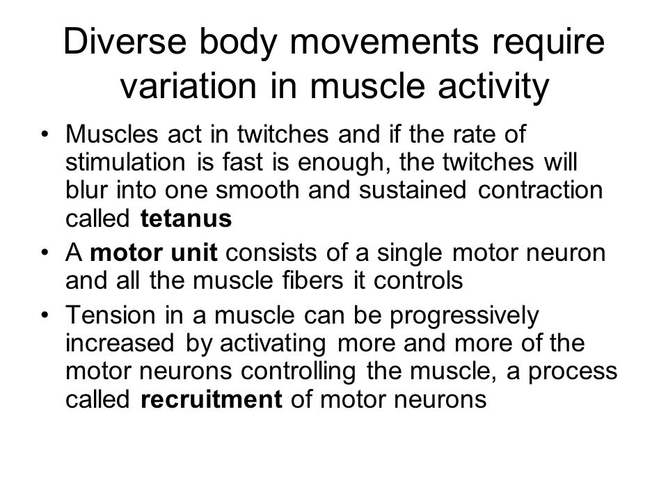 Diverse body movements require variation in muscle activity