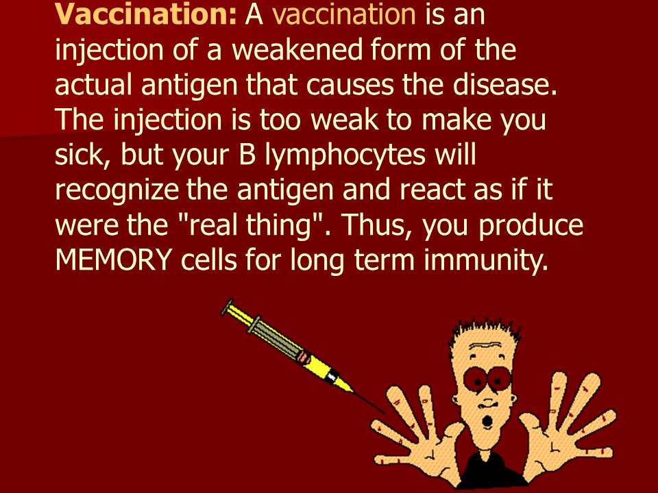 Vaccination: A vaccination is an injection of a weakened form of the actual antigen that causes the disease.