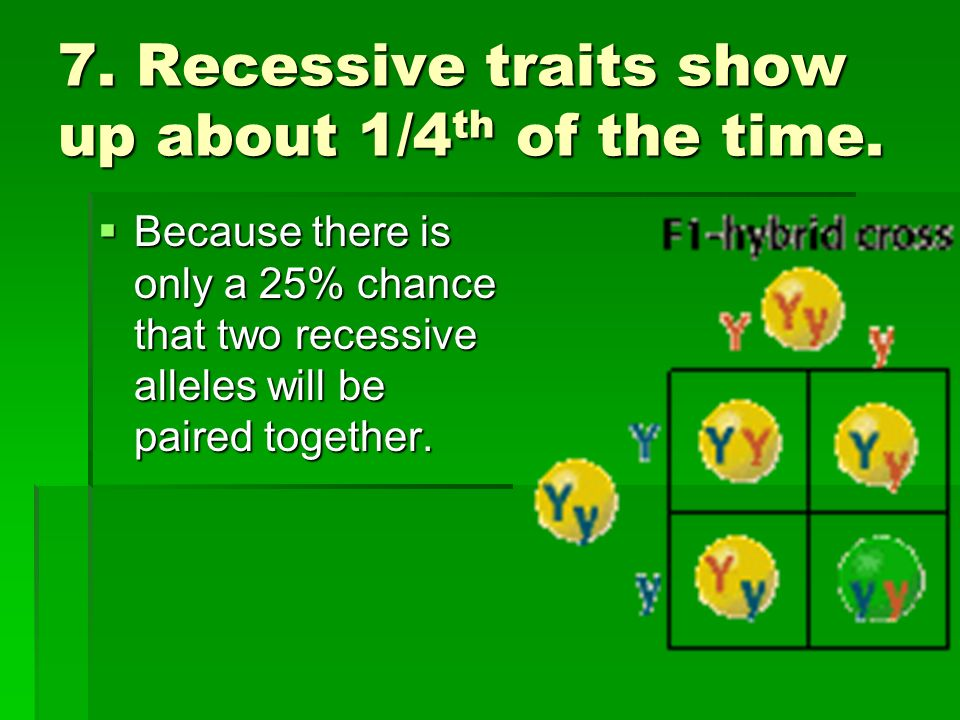 7. Recessive traits show up about 1/4th of the time.