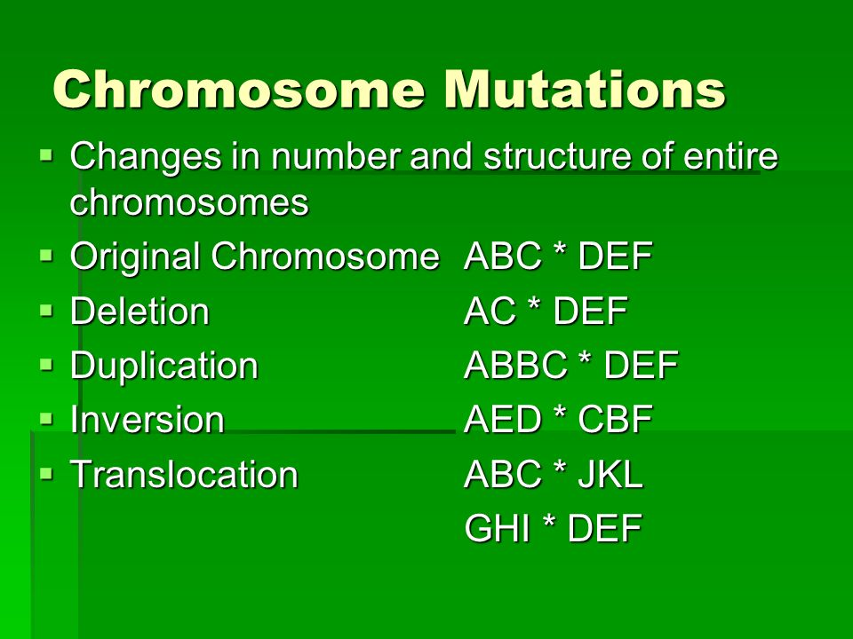 Chromosome Mutations Changes in number and structure of entire chromosomes. Original Chromosome ABC * DEF.