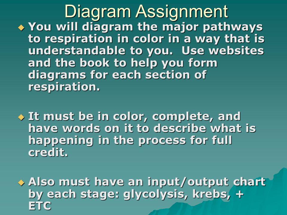 Diagram Assignment