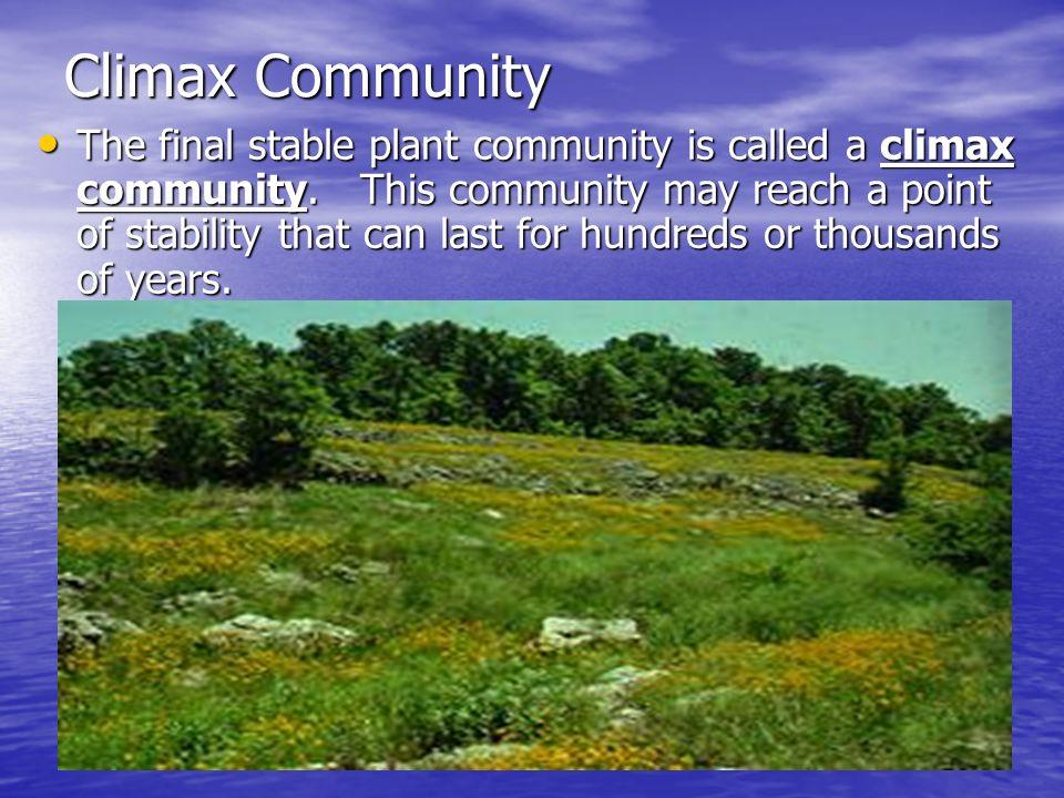 Climax Community