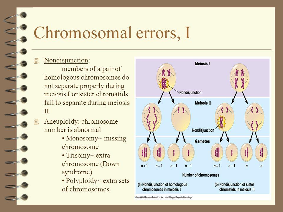 Chromosomal errors, I
