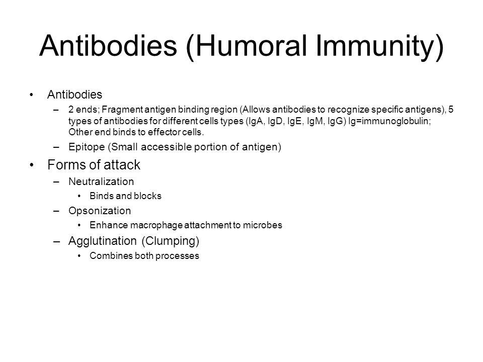 Antibodies (Humoral Immunity)