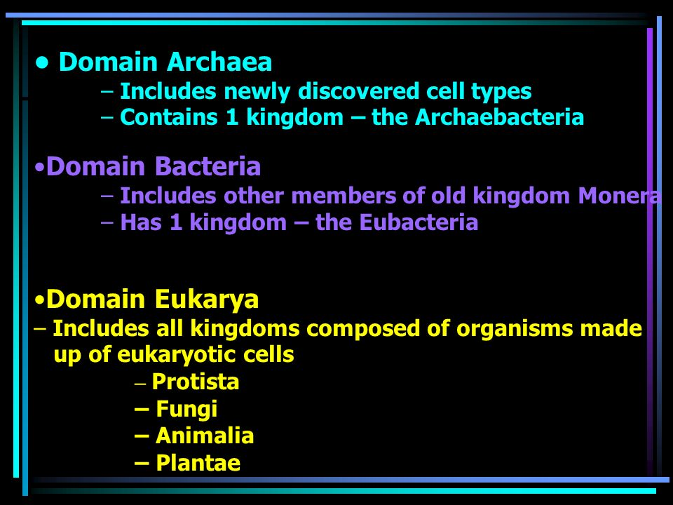 • Domain Archaea The Three Domains Domain Bacteria Domain Eukarya