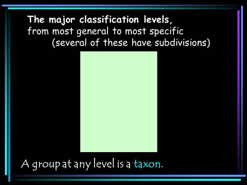 A group at any level is a taxon.