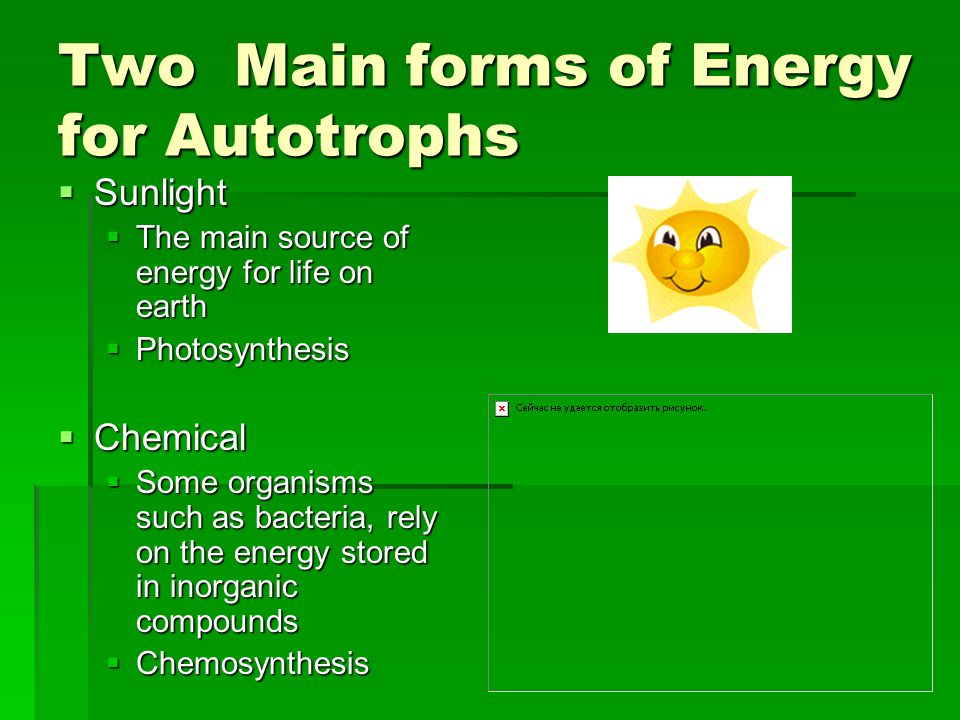 Two Main forms of Energy for Autotrophs