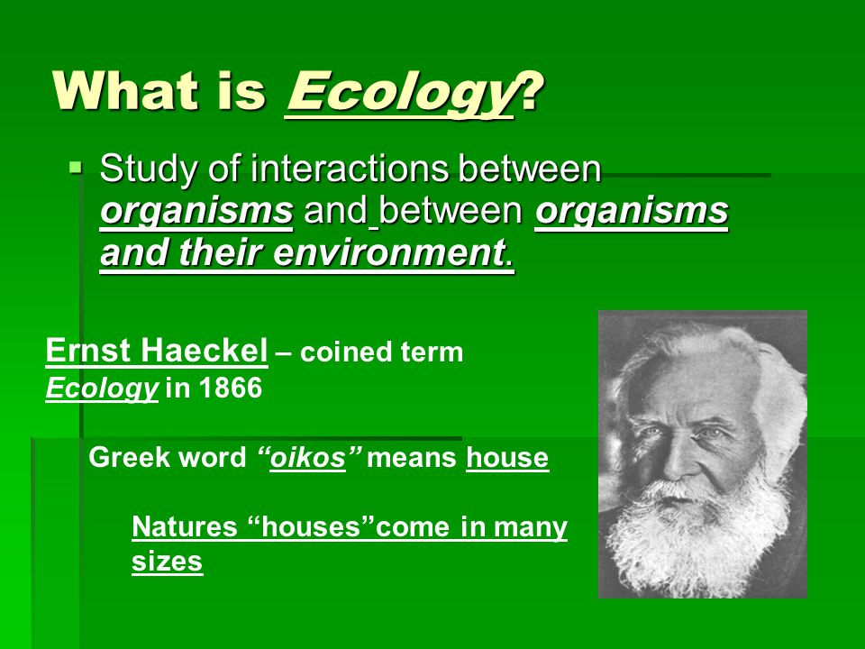What is Ecology Study of interactions between organisms and between organisms and their environment.