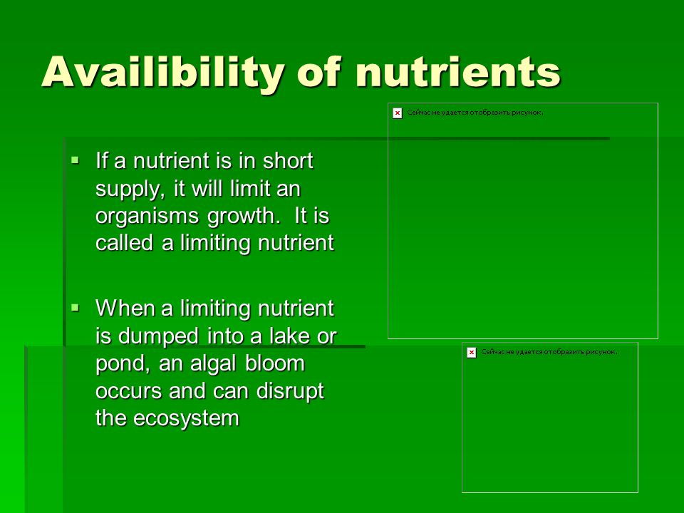 Availibility of nutrients