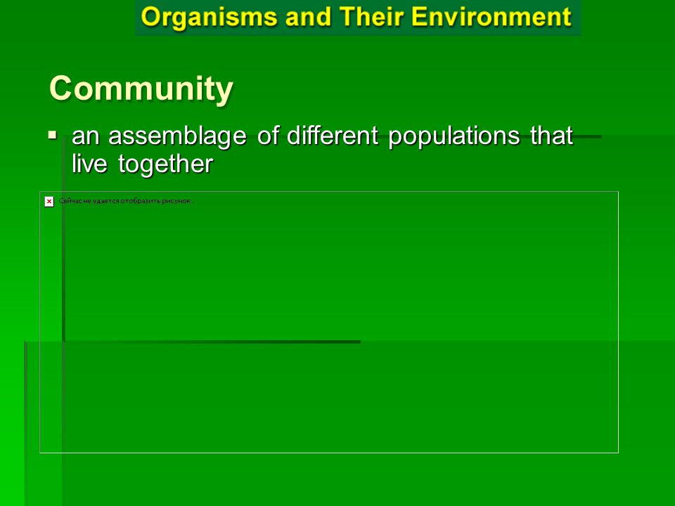 Community an assemblage of different populations that live together