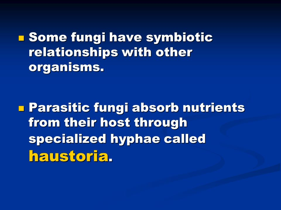 Some fungi have symbiotic relationships with other organisms.