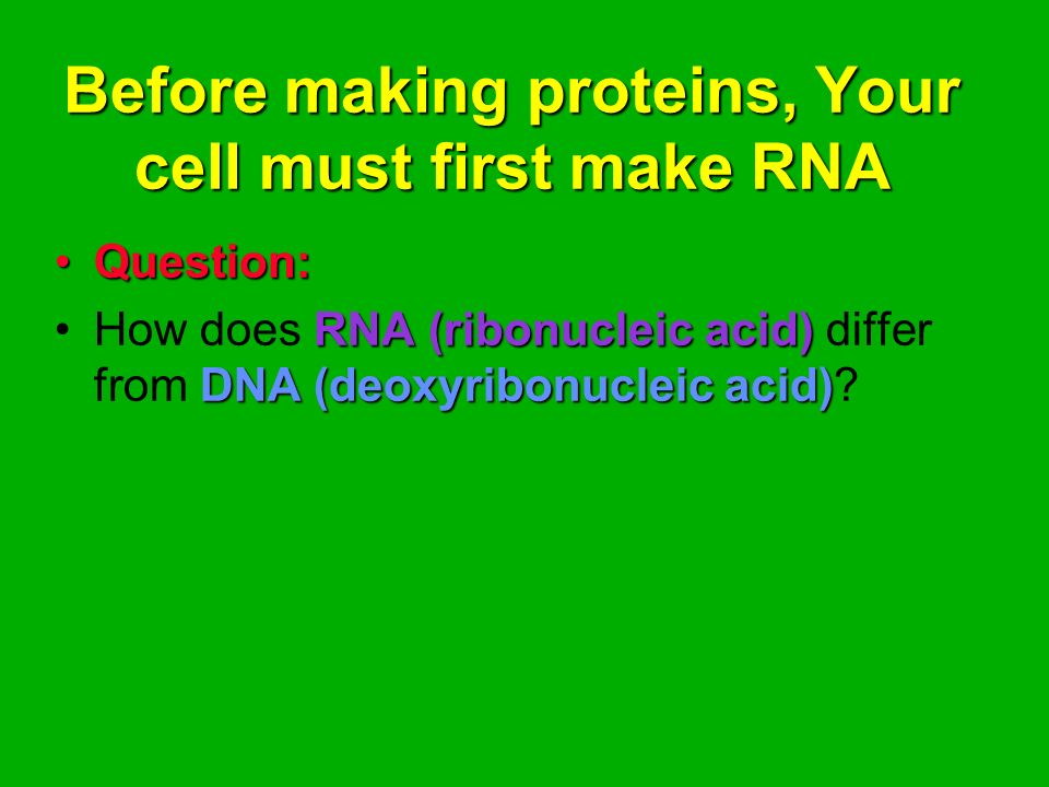 Before making proteins, Your cell must first make RNA