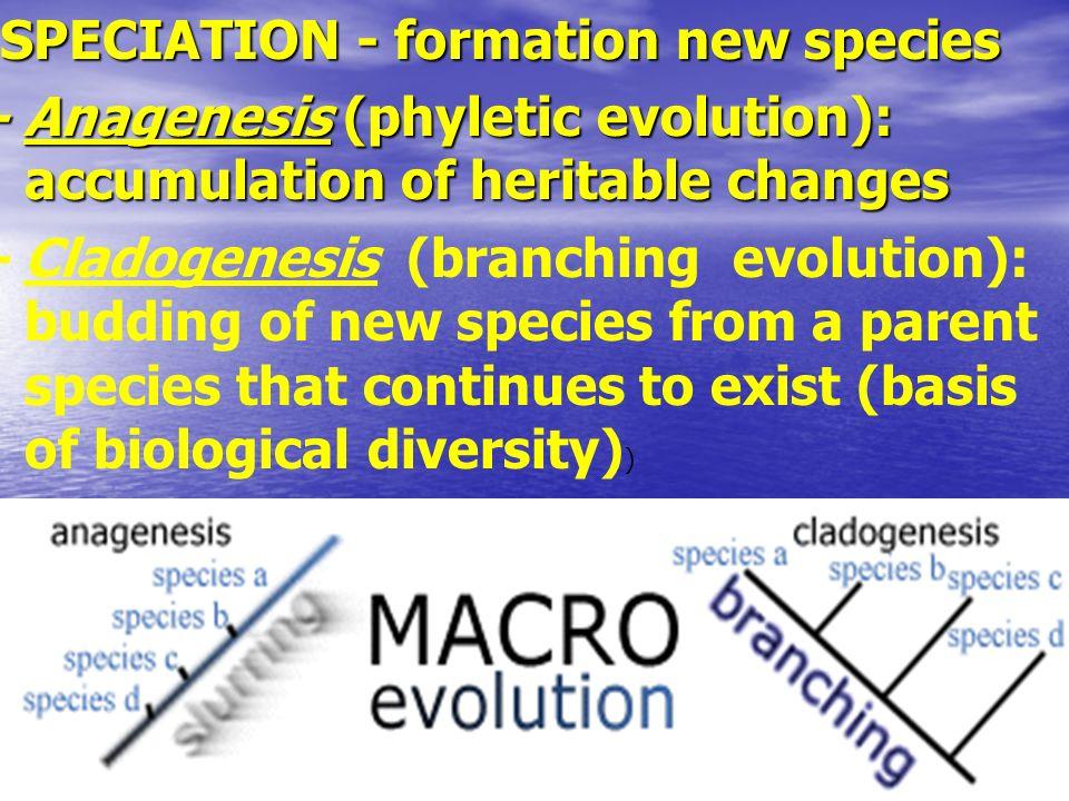 SPECIATION - formation new species