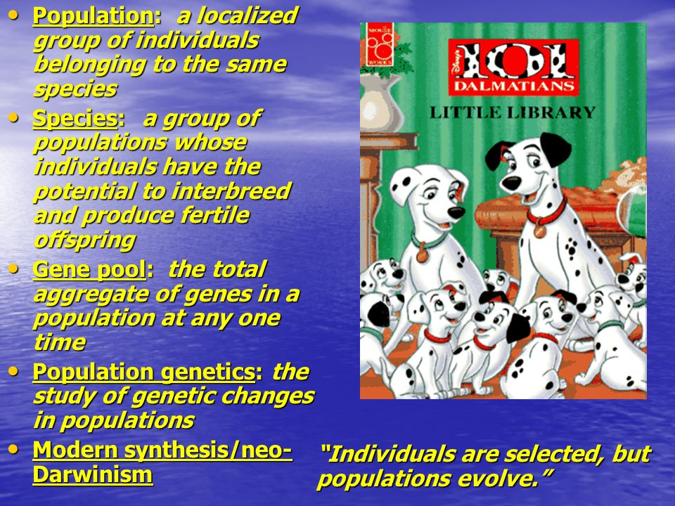 Population: a localized group of individuals belonging to the same species