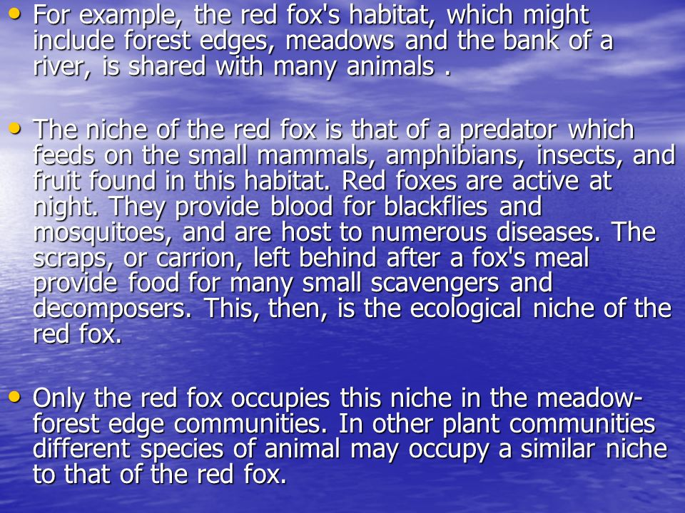 For example, the red fox s habitat, which might include forest edges, meadows and the bank of a river, is shared with many animals .