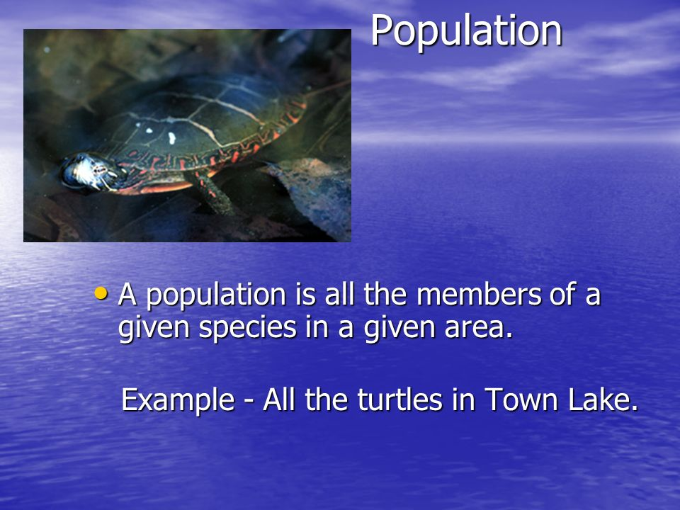 Population A population is all the members of a given species in a given area.