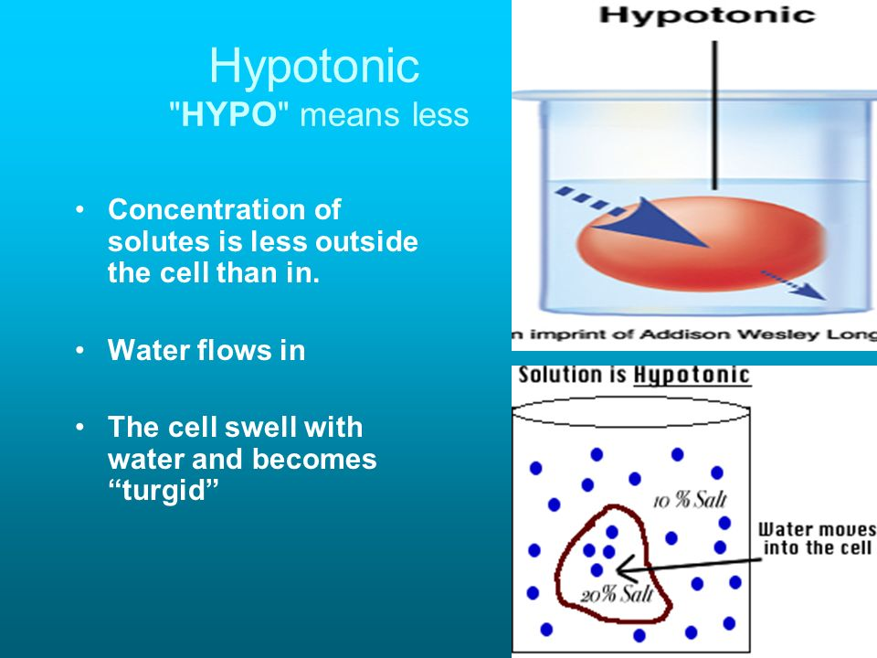 Hypotonic HYPO means less