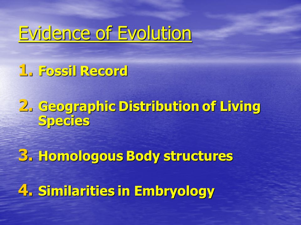 Evidence of Evolution Fossil Record
