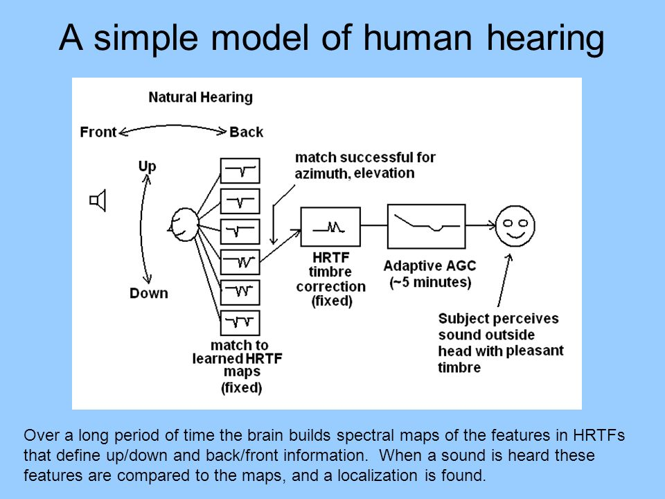 A simple model of human hearing