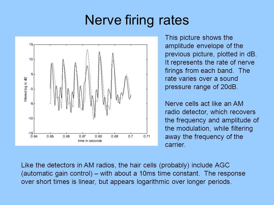 Nerve firing rates