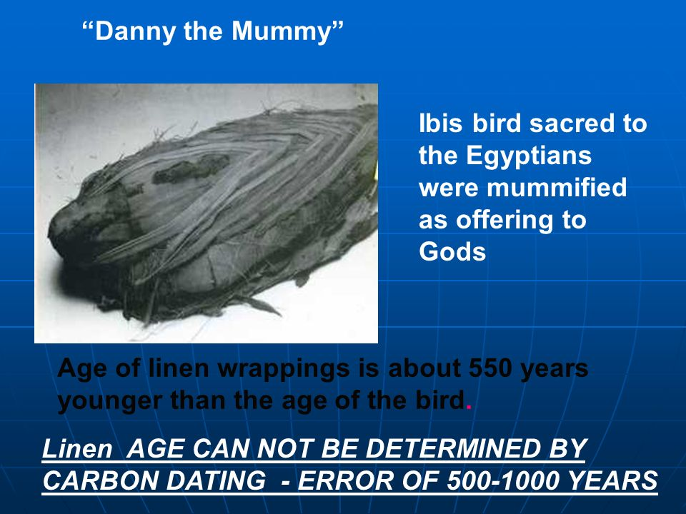 Danny the Mummy Ibis bird sacred to the Egyptians were mummified as offering to Gods. Age of linen wrappings is about 550 years.