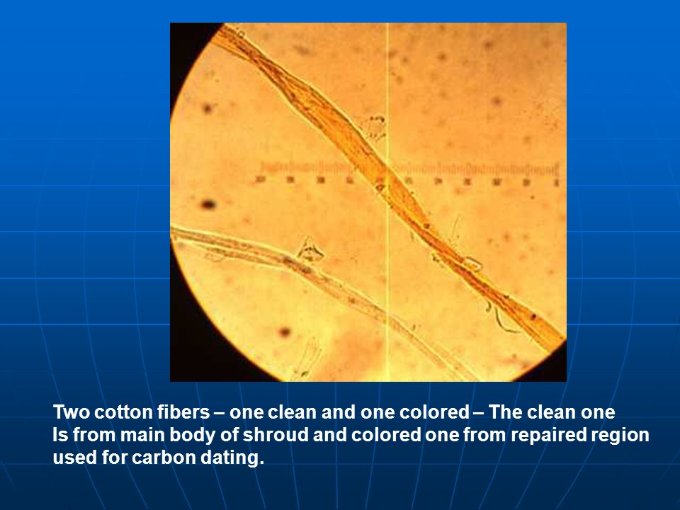 Two cotton fibers – one clean and one colored – The clean one