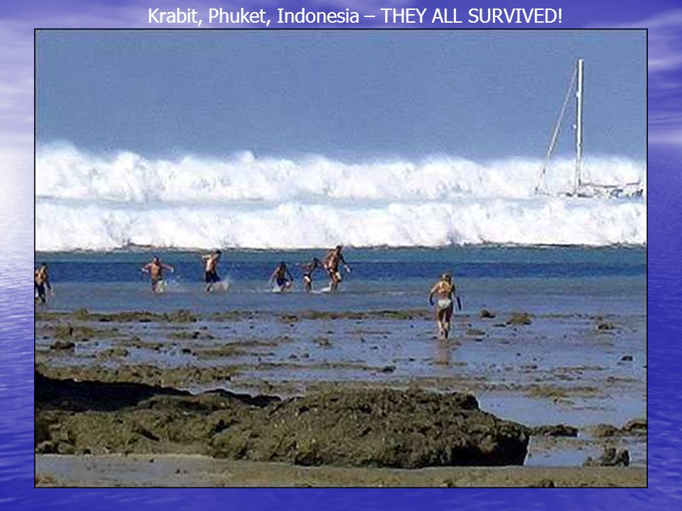 Krabit, Phuket, Indonesia – THEY ALL SURVIVED!