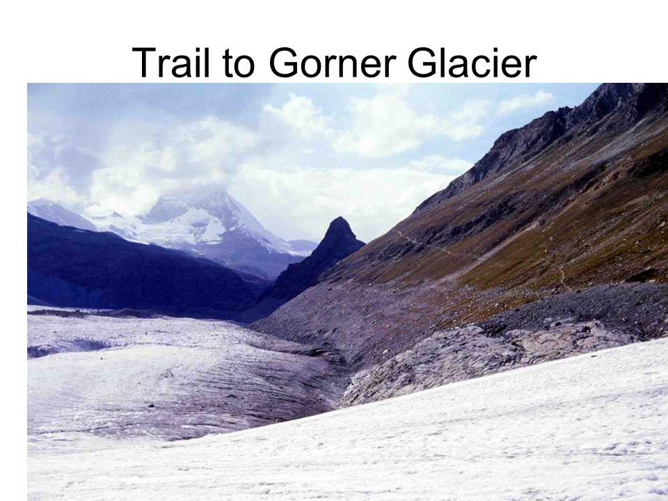 Trail to Gorner Glacier