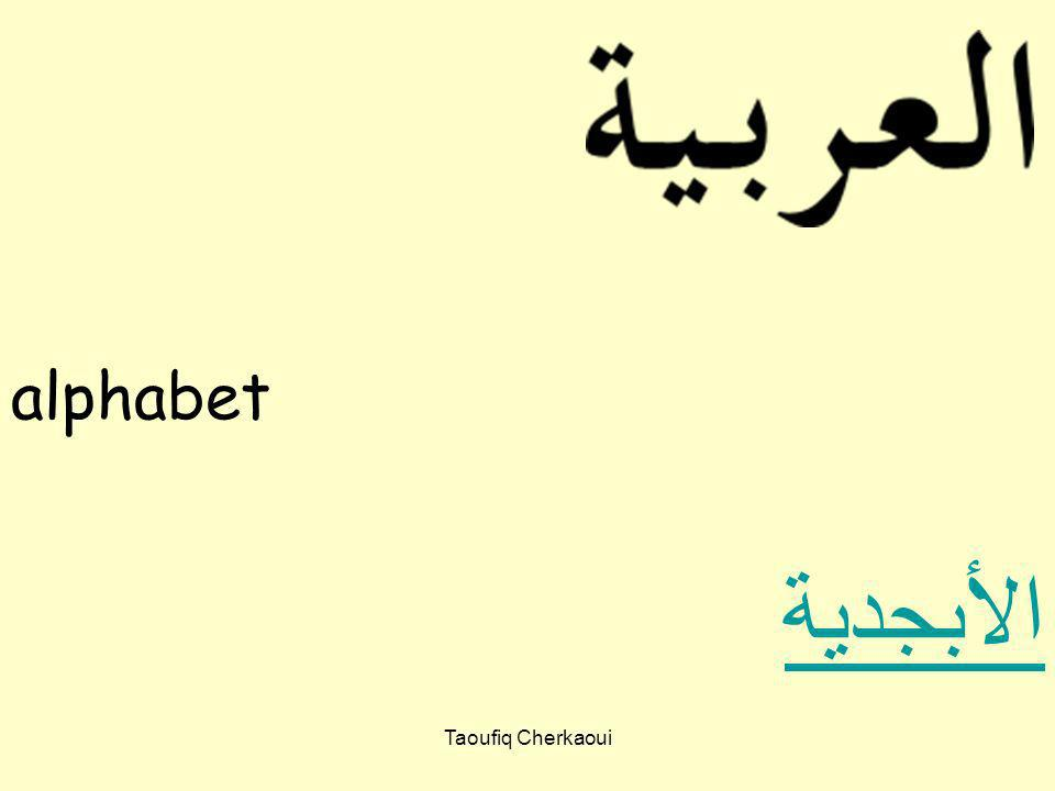 alphabet الأبجدية Taoufiq Cherkaoui