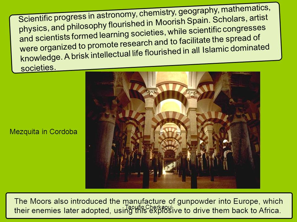Scientific progress in astronomy, chemistry, geography, mathematics, physics, and philosophy flourished in Moorish Spain. Scholars, artist and scientists formed learning societies, while scientific congresses were organized to promote research and to facilitate the spread of knowledge. A brisk intellectual life flourished in all Islamic dominated societies.
