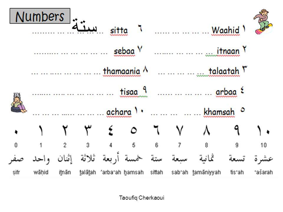 ستة Taoufiq Cherkaoui