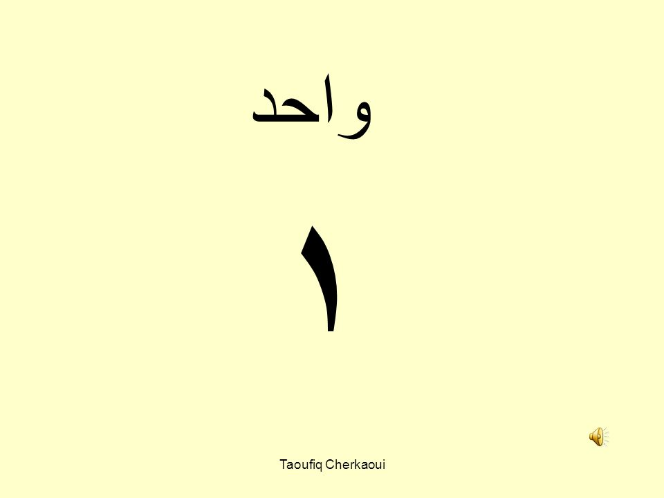 واحد ١ Taoufiq Cherkaoui