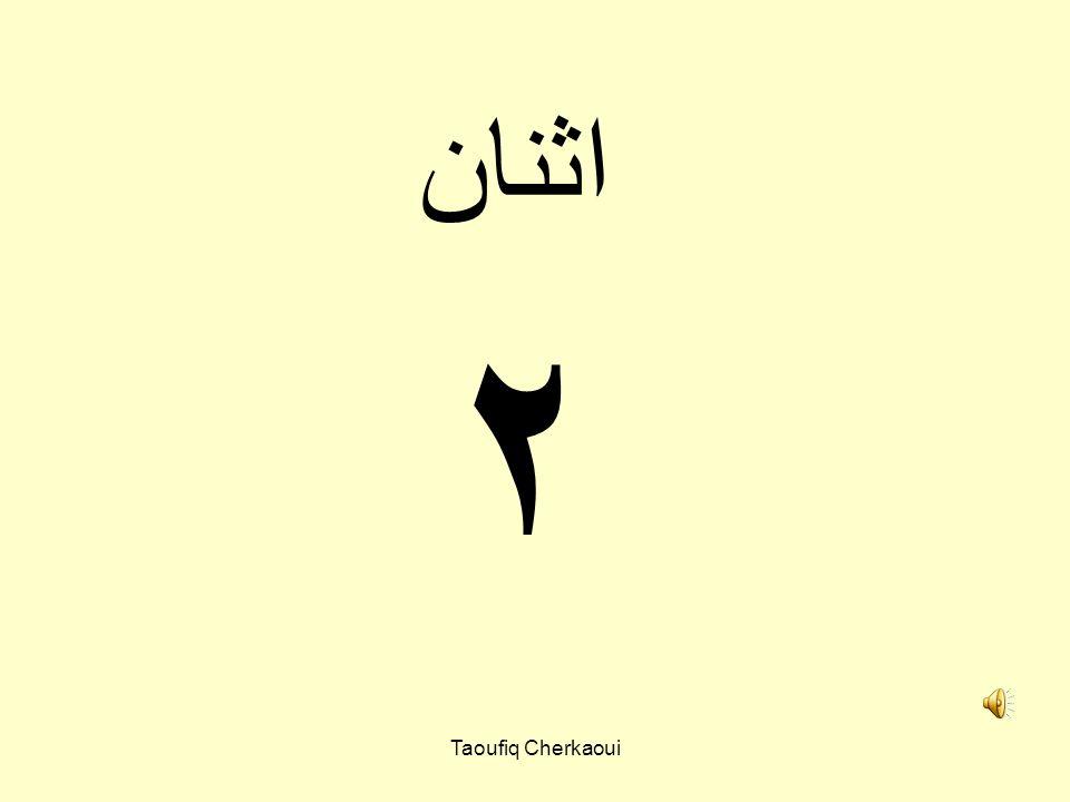 اثنان ٢ Taoufiq Cherkaoui