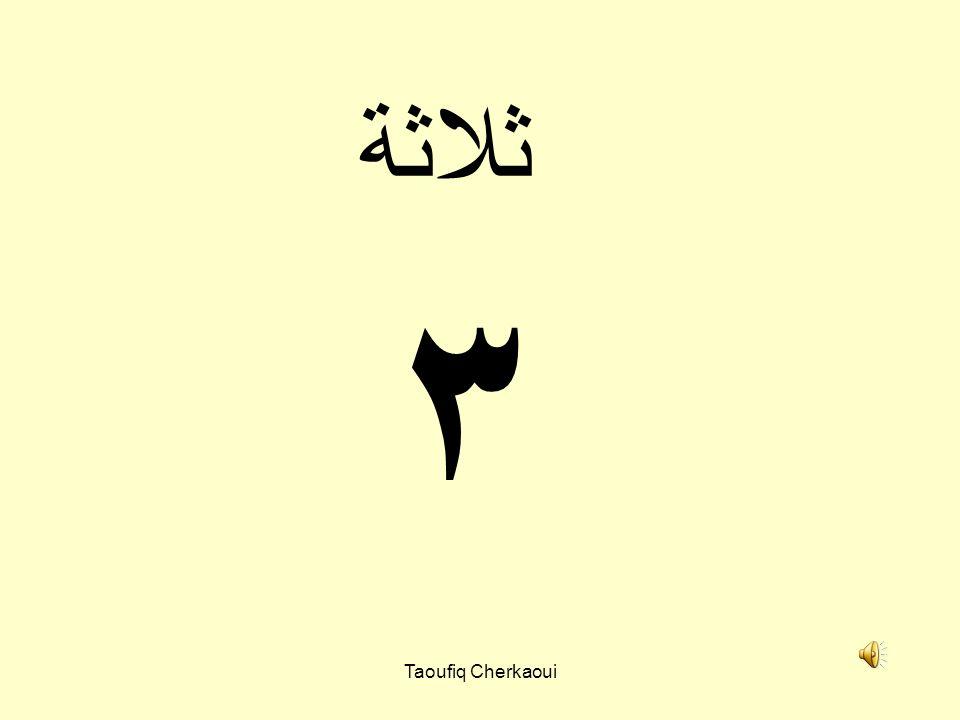 ثلاثة ٣ Taoufiq Cherkaoui