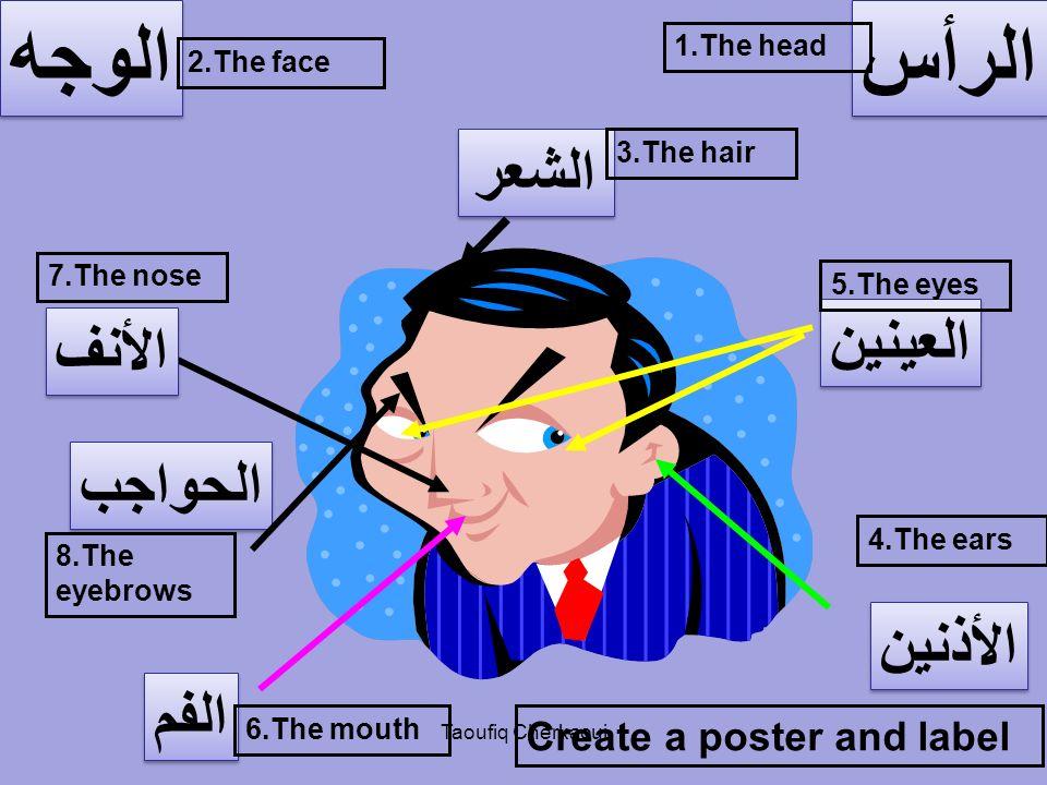 الوجه الرأس الشعر العينين الأنف الحواجب الأذنين الفم