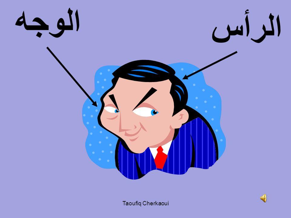 الوجه الرأس Taoufiq Cherkaoui