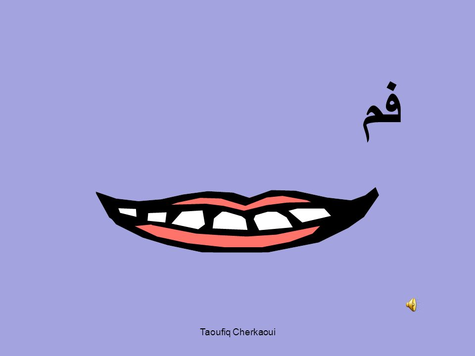 فم Taoufiq Cherkaoui