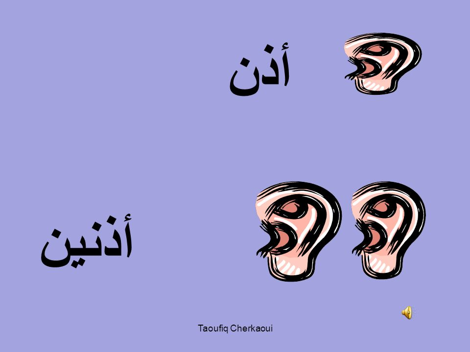 أذن أذنين Taoufiq Cherkaoui
