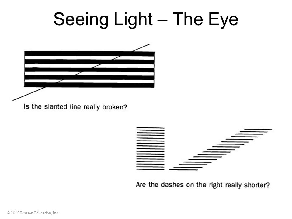 Seeing Light – The Eye
