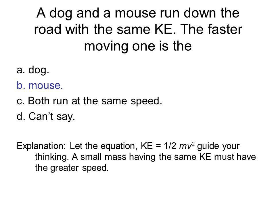 A dog and a mouse run down the road with the same KE