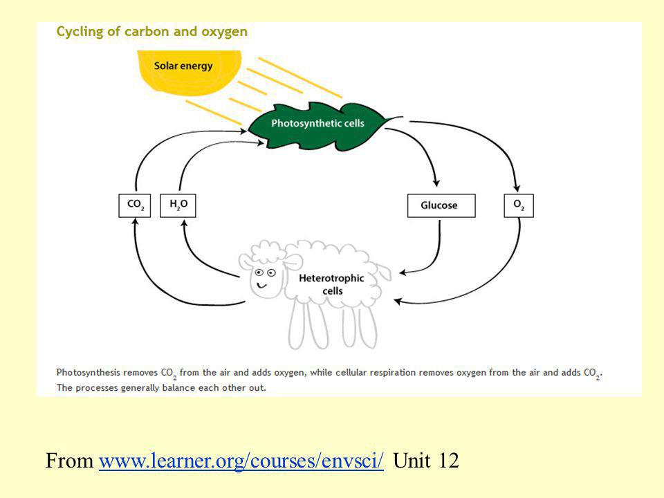 From www.learner.org/courses/envsci/ Unit 12