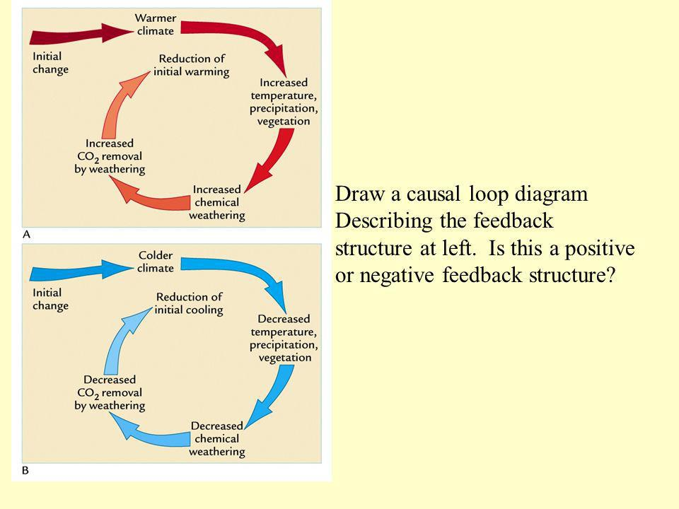 Draw a causal loop diagram