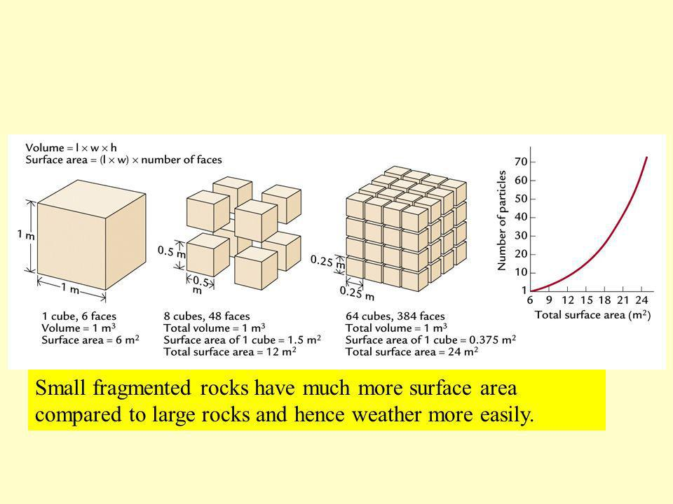 Small fragmented rocks have much more surface area compared to large rocks and hence weather more easily.