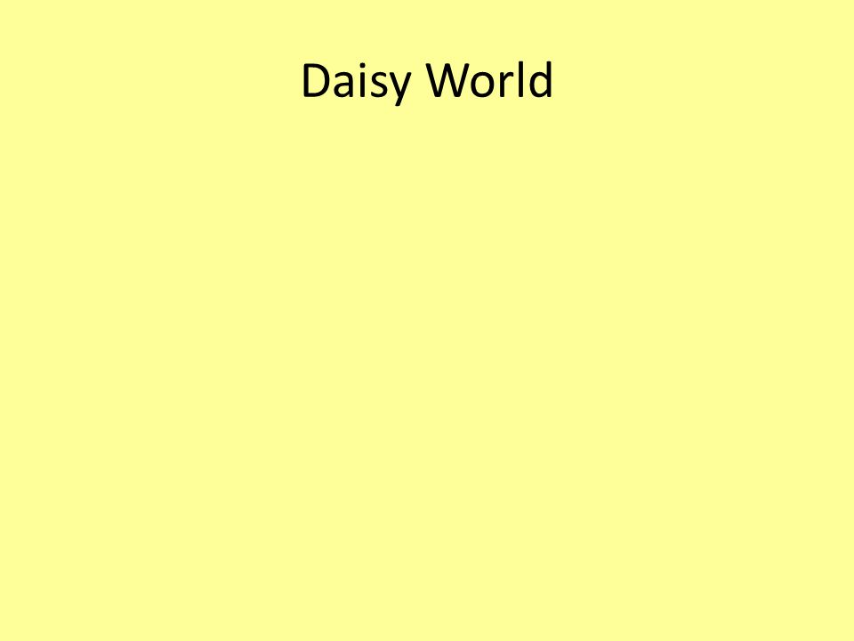 Daisy World
