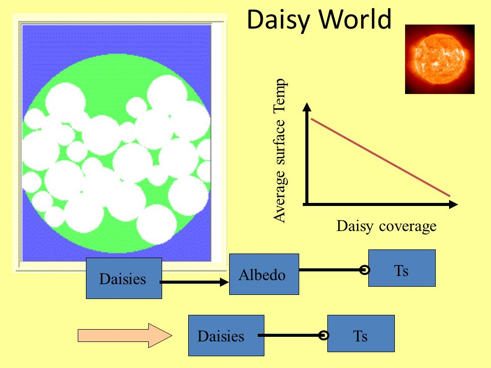 Daisy World Average surface Temp Daisy coverage Ts Albedo Daisies