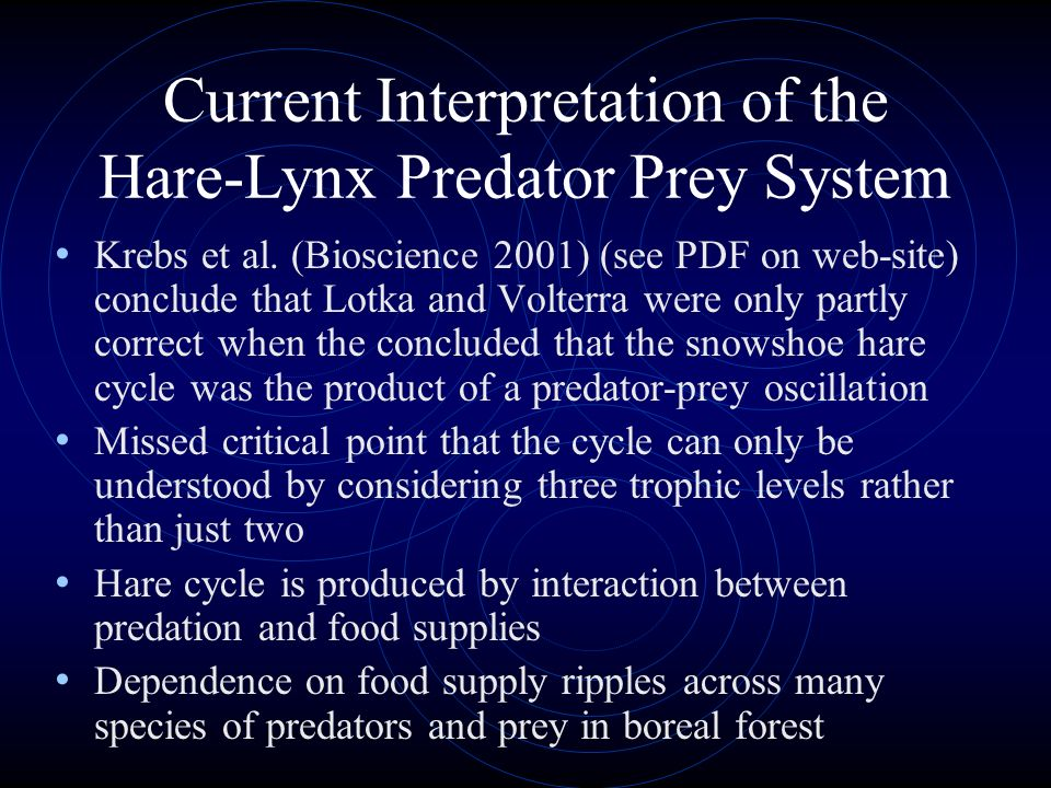Current Interpretation of the Hare-Lynx Predator Prey System